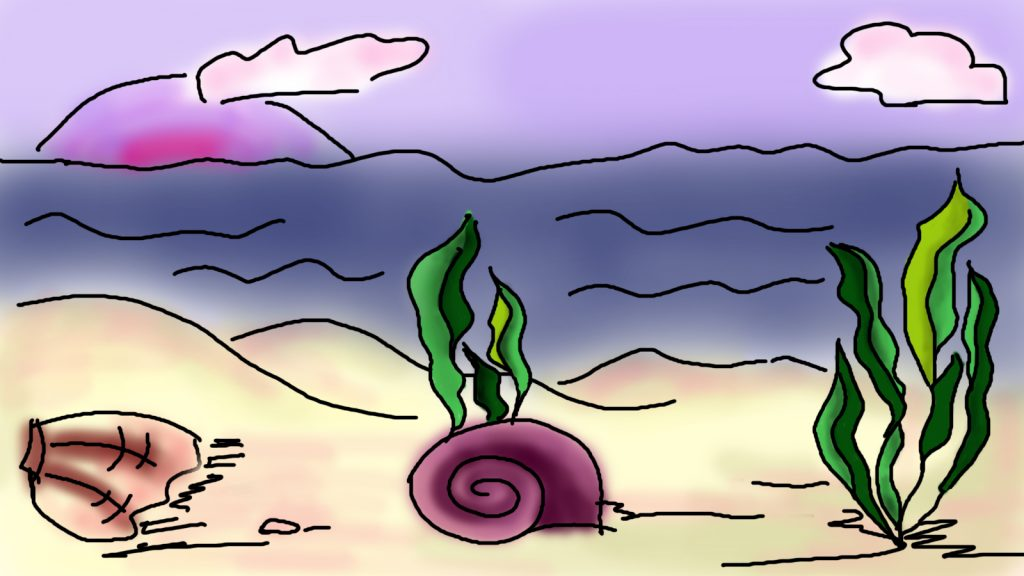 Digital color drawing of the seabed with shell and algae, the water above it.